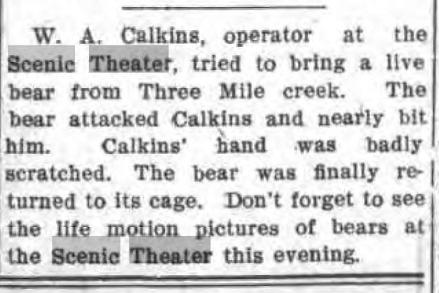 Scenic Theatre Calkins attempts to bring live bear from three mile creek, article (Tonawanda News, 1907-07-20).jpg