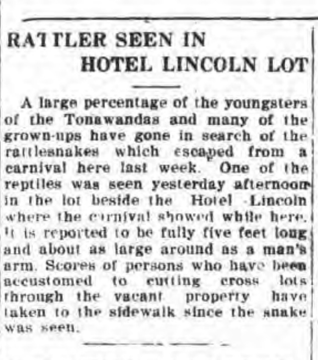 Rattler snake seen in Hotel Lincoln lot, article (Tonawanda News, 1920-06-08).jpg