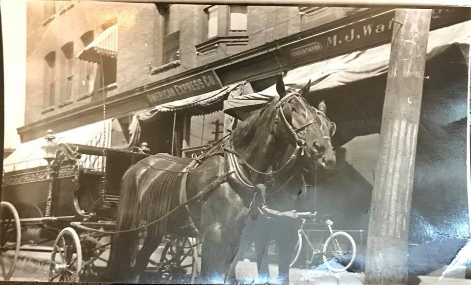 Horse-drawn hearse, Wattengel Funeral Home, photo (Shared by Joe Mantione).jpg