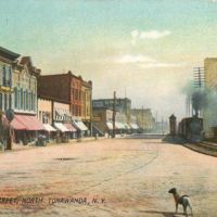 Webster Street, with dog, postcard.jpg