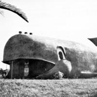Blue Whale Car Wash, photo (1983).jpg
