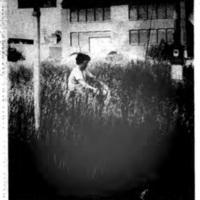 Former Ironton School grass high, photo (Tonawand News, 1982-06-10).jpg
