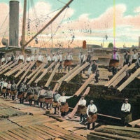 Unloading Lumber in the Twin Cities, photo postcard (1908).jpg