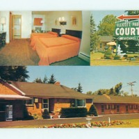Ellicott Park Court Motel, photo postcard (c1977).jpg