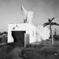 Blue Whale Car Wash, photo of tail (1983).jpg