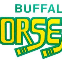 Buffalo Norsemen bumper sticker (buffalosportsmuseum).jpg