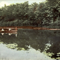 Scene on Ellicott Creek, postcard (c1905).jpg